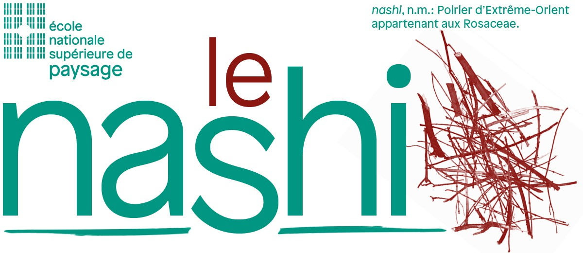 Nécessité • nashi n°59